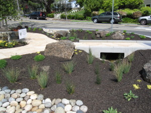 Flow-through rain garden design is low maintenance