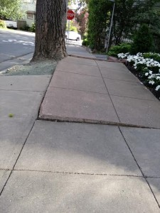 Uneven sidewalks especially challenge young and old pedestrians