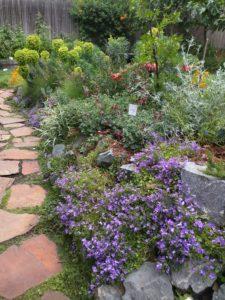 Gardens IMG_20160522_114606